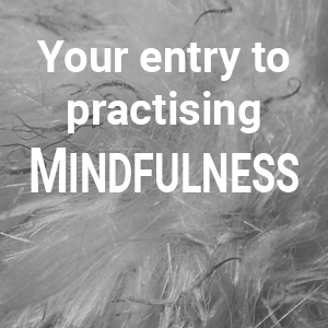 Con-TACT Campus course: Vour entry to practising mindfulness