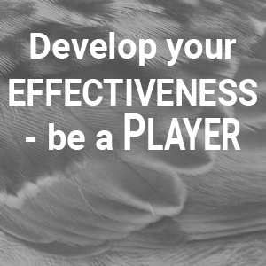 Con-TACT Campus course: Develop your Effectiveness – be a Player